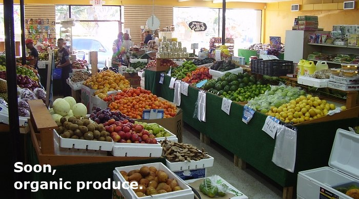 fresh produce market